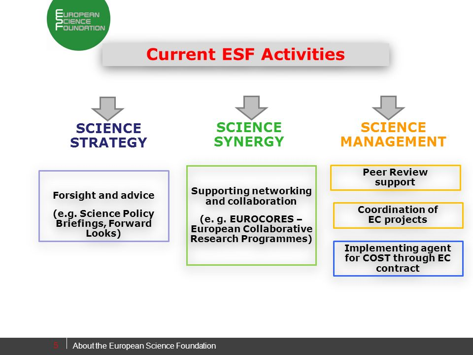 5 Forsight and advice (e.g. Science Policy Briefings, Forward Looks) Forsight and advice (e.g.