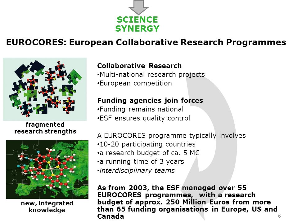 EUROCORES Programmes - Examples The Origin of Man, Language and Languages (2003-2006) Histories from the North – environments, movements, narratives (BOREAS)(2006-2009) The Evolution of Cooperation and Trading (2007-2010) Modelling intelligent interaction - Logic in the Humanities, Social and Computational sciences (2008-2011) Understanding and Misunderstanding: Cognition, Communication and Culture (2010-2013) 7