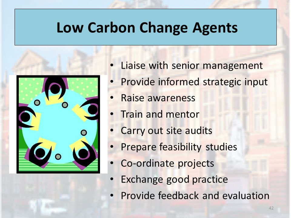 Low Carbon Change Agents Liaise with senior management Provide informed strategic input Raise awareness Train and mentor Carry out site audits Prepare feasibility studies Co-ordinate projects Exchange good practice Provide feedback and evaluation 42