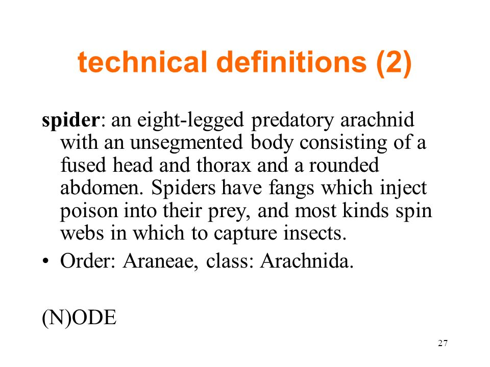 technical definitions (2) spider: an eight-legged predatory arachnid with an unsegmented body consisting of a fused head and thorax and a rounded abdomen.