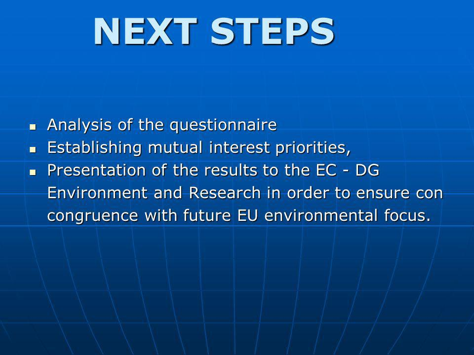 NEXT STEPS Analysis of the questionnaire Analysis of the questionnaire Establishing mutual interest priorities, Establishing mutual interest prioritie