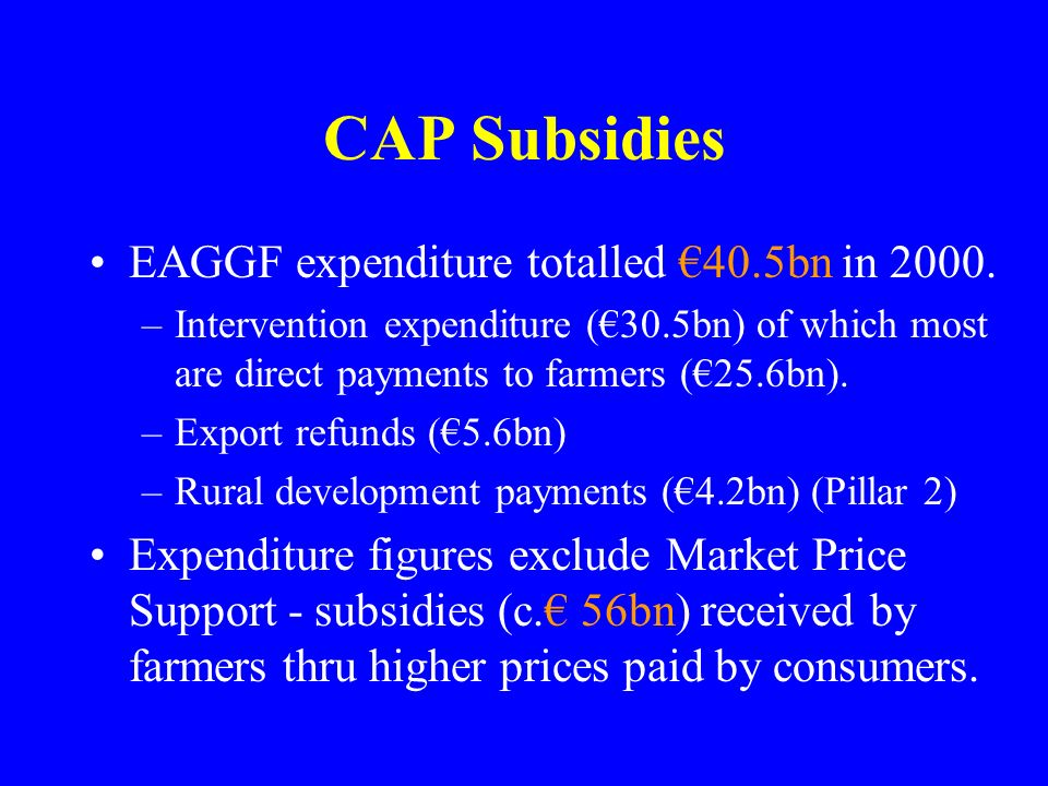CAP Subsidies EAGGF expenditure totalled 40.5bn in 2000. –Intervention expenditure (30.5bn) of which most are direct payments to farmers (25.6bn). –Ex