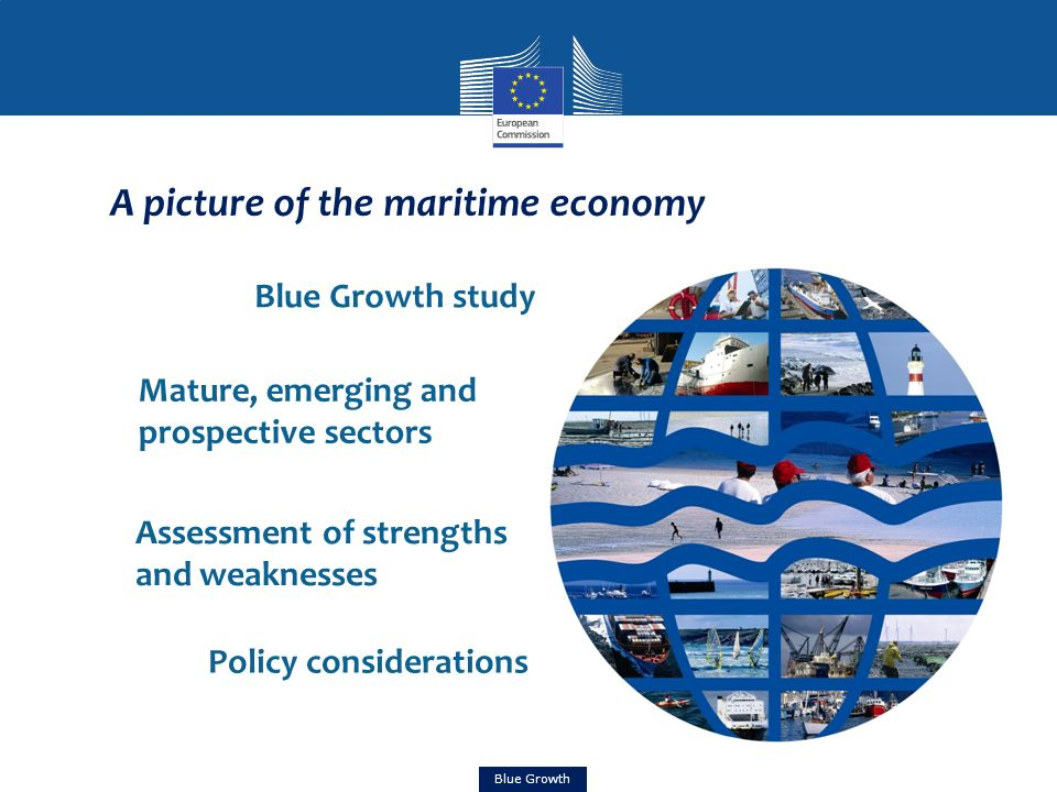 Blue Growth study A picture of the maritime economy Mature, emerging and prospective sectors Assessment of strengths and weaknesses Policy considerati