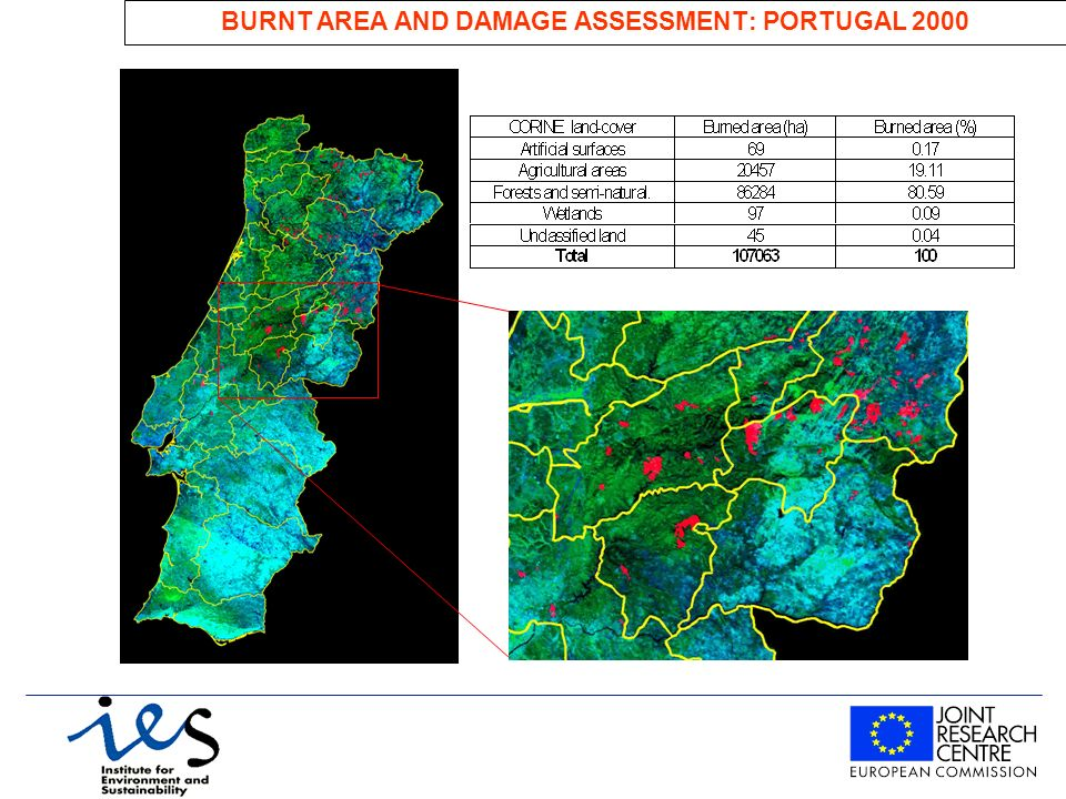 BURNT AREA AND DAMAGE ASSESSMENT: PORTUGAL 2000