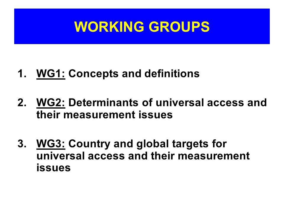 WORKING GROUPS 1.WG1: Concepts and definitions 2.WG2: Determinants of universal access and their measurement issues 3.WG3: Country and global targets