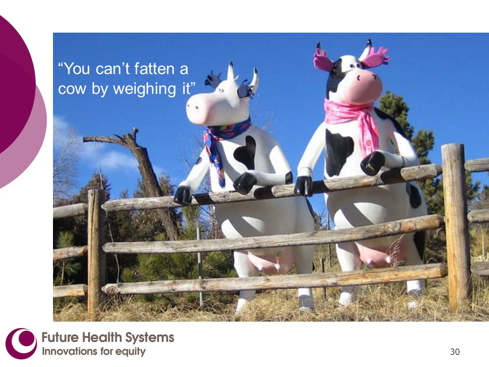 30 You cant fatten a cow by weighing it