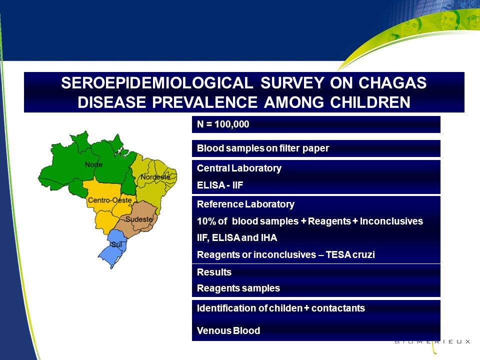 18 SEROEPIDEMIOLOGICAL SURVEY ON CHAGAS DISEASE PREVALENCE AMONG CHILDREN Blood samples on filter paper N = 100,000 Central Laboratory ELISA - IIF Ref