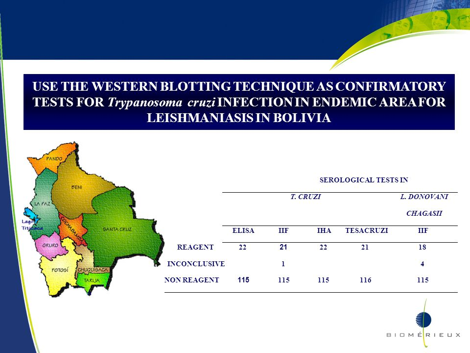22 USE THE WESTERN BLOTTING TECHNIQUE AS CONFIRMATORY TESTS FOR Trypanosoma cruzi INFECTION IN ENDEMIC AREA FOR LEISHMANIASIS IN BOLIVIA SEROLOGICAL T