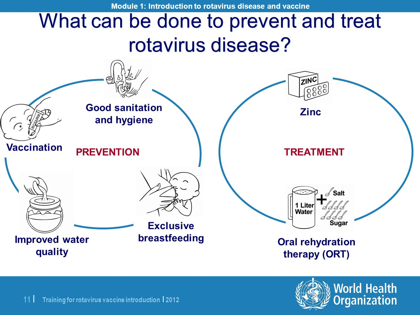 Training for rotavirus vaccine introduction | 2012 11 | Module 1: Introduction to rotavirus disease and vaccine Good sanitation and hygiene Exclusive