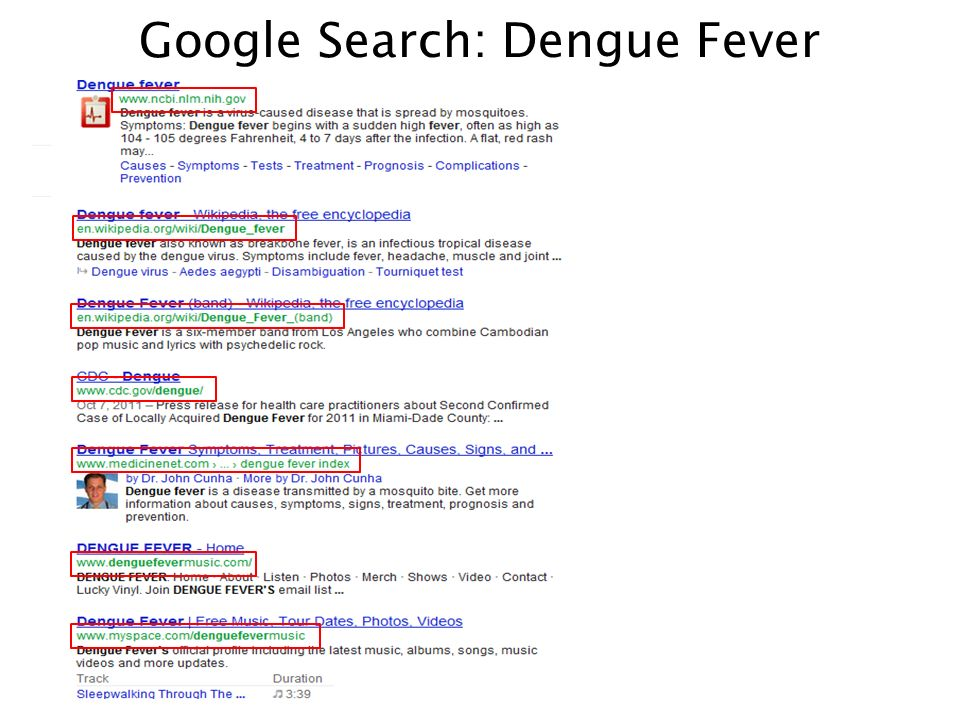 Google Search: Dengue Fever