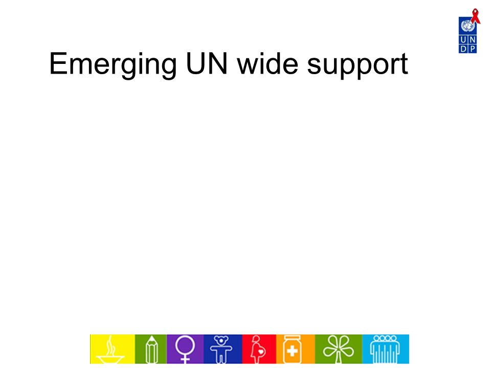 Emerging UN wide support