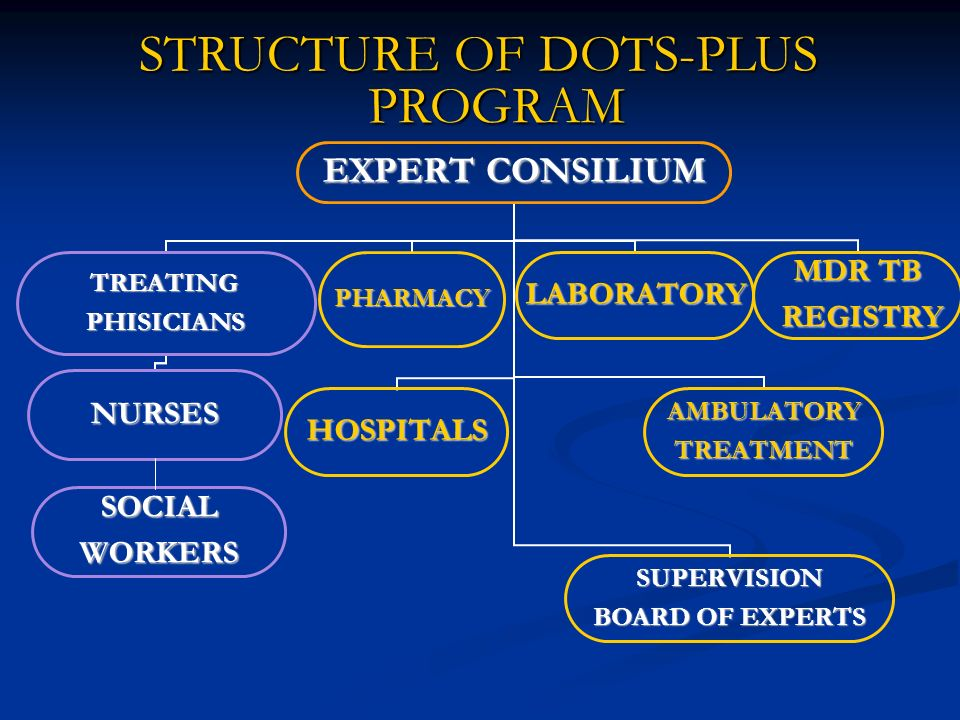 DOTS PLUS IMPLEMENTATION STEP III ESTABLISHED CASE MANAGEMENT SYSTEM ESTABLISHED CASE MANAGEMENT SYSTEM Roles and responsibilities of HCW Roles and responsibilities of HCW Patient education Patient education Default tracing Default tracing Improved infection control measures Improved infection control measures Center of Excellence founded in 2000 Center of Excellence founded in 2000 International training centre for treatment and management for MDR TB International training centre for treatment and management for MDR TB Built laboratory capacity – Built laboratory capacity – DST to all I and II line drugs DST to all I and II line drugs Rapid diagnostic methods for patient with risk of MDR-TB Rapid diagnostic methods for patient with risk of MDR-TB Established database, data management, and information system 2002 -2003 Established database, data management, and information system 2002 -2003