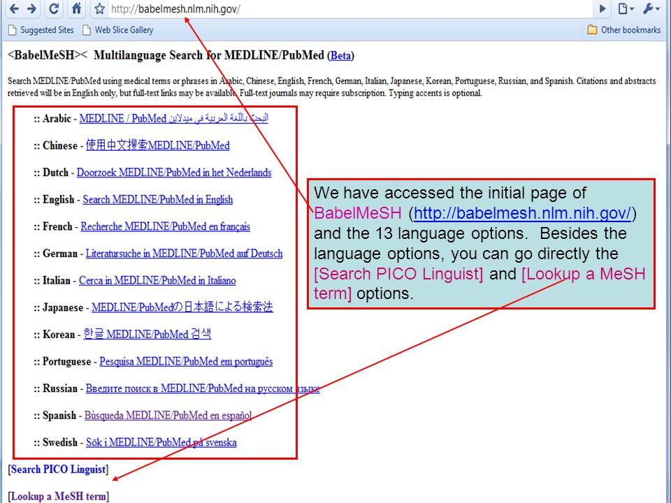 We have accessed the initial page of BabelMeSH (http://babelmesh.nlm.nih.gov/) and the 13 language options.