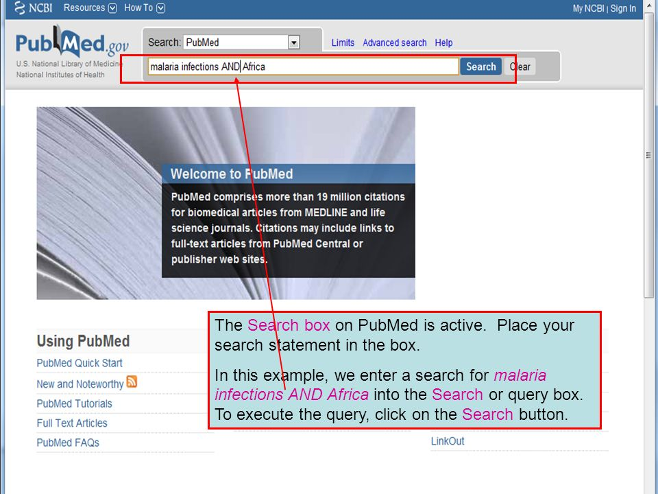 The Search box on PubMed is active. Place your search statement in the box.