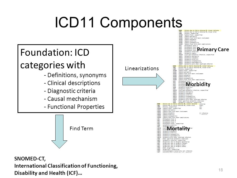 ICD11 Components 18 Foundation: ICD categories with - Definitions, synonyms - Clinical descriptions - Diagnostic criteria - Causal mechanism - Functio