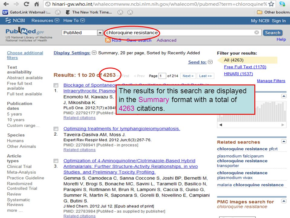 The results for this search are displayed in the Summary format with a total of 4263 citations.