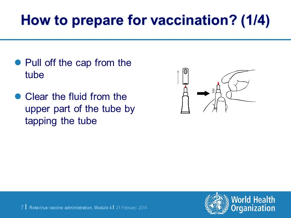 Rotavirus vaccine administration, Module 4 | 21 February 2014 7 |7 | Pull off the cap from the tube Clear the fluid from the upper part of the tube by