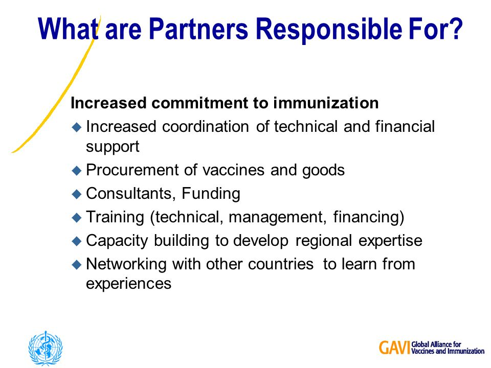 What are Partners Responsible For.