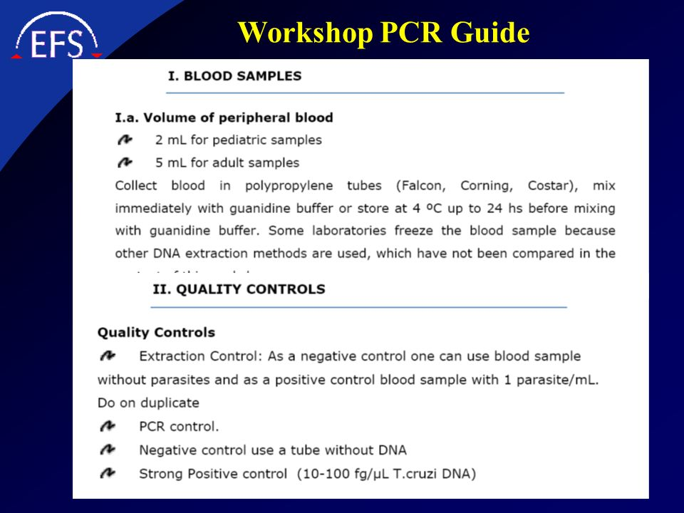 Workshop PCR Guide