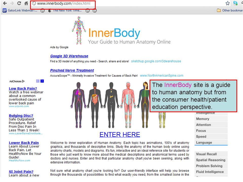 The InnerBody site is a guide to human anatomy but from the consumer health/patient education perspective.