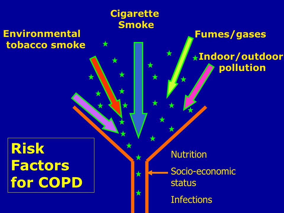 Cigarette Smoke Environmental tobacco smoke Fumes/gases Indoor/outdoor pollution Occupational dusts Risk Factors for COPD Nutrition Socio-economic sta