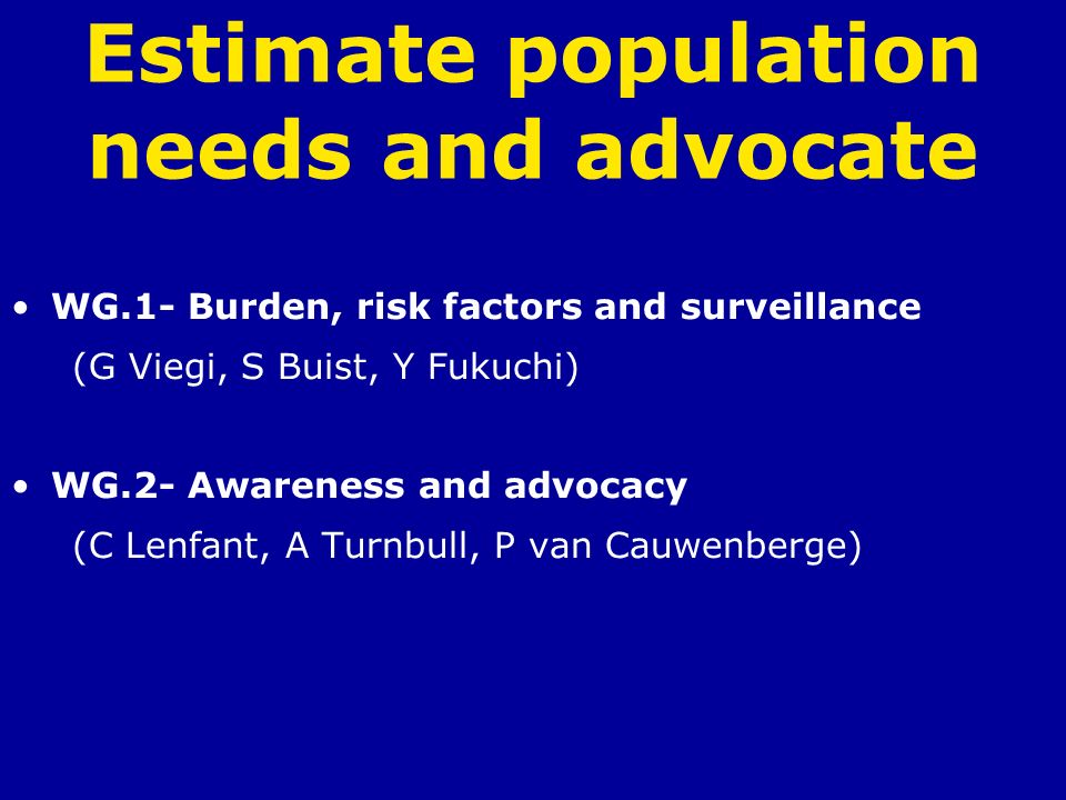 Estimate population needs and advocate WG.1- Burden, risk factors and surveillance (G Viegi, S Buist, Y Fukuchi) WG.2- Awareness and advocacy (C Lenfa