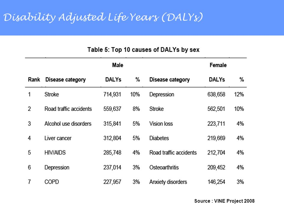Disability Adjusted Life Years (DALYs) Source : VINE Project 2008