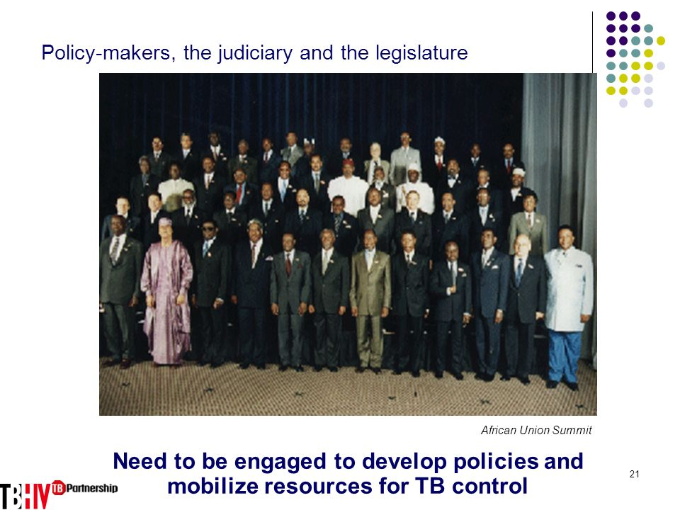 21 Policy-makers, the judiciary and the legislature Need to be engaged to develop policies and mobilize resources for TB control African Union Summit