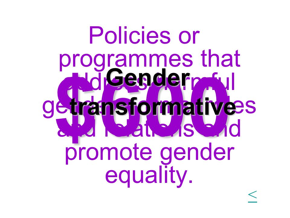 $600 Policies or programmes that address harmful gender norms, roles and relations and promote gender equality. Gender transformative <