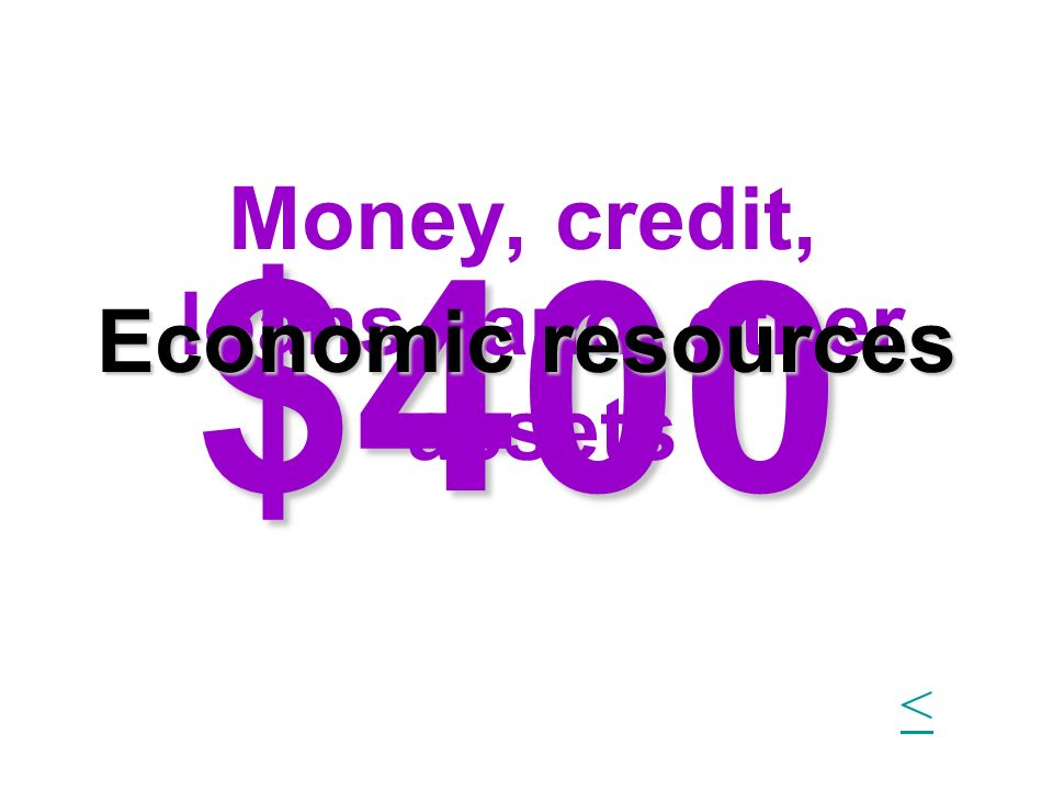 $400 Money, credit, loans, land, other assets Economic resources <