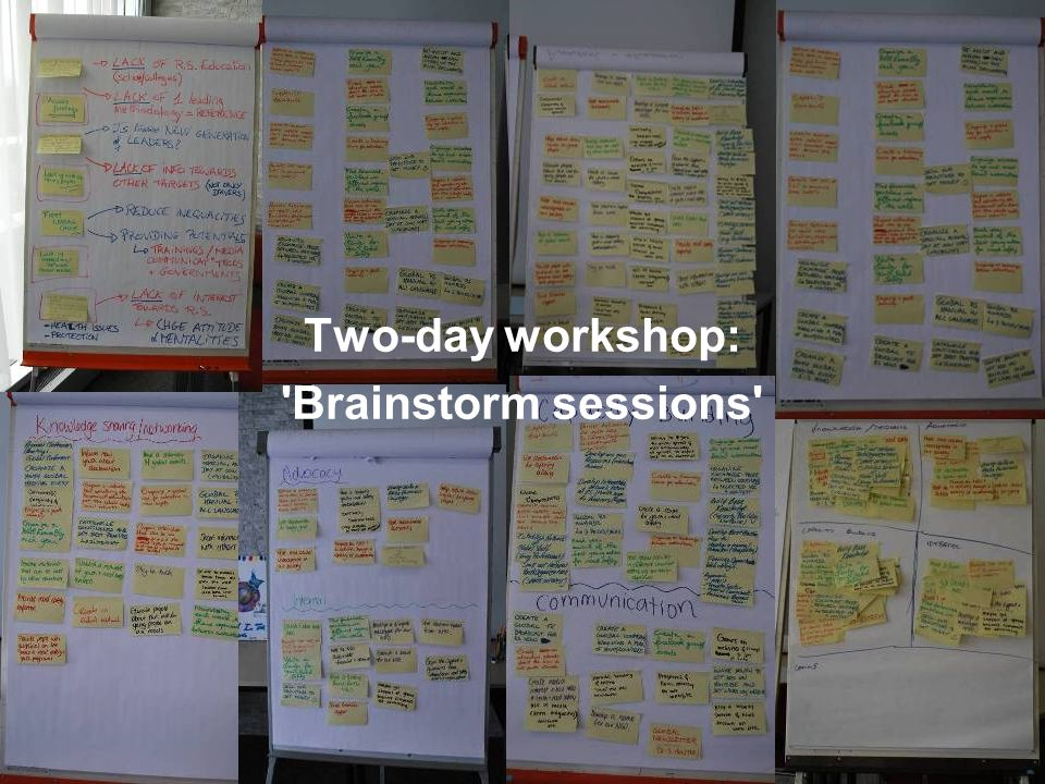 April 2009 Introduction to the Global Youth NGO for Road Safety8 Two-day workshop: Brainstorm sessions