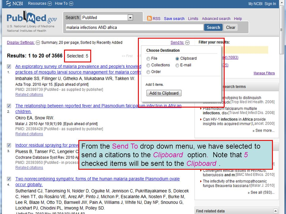 From the Send To drop down menu, we have selected to send a citations to the Clipboard option.