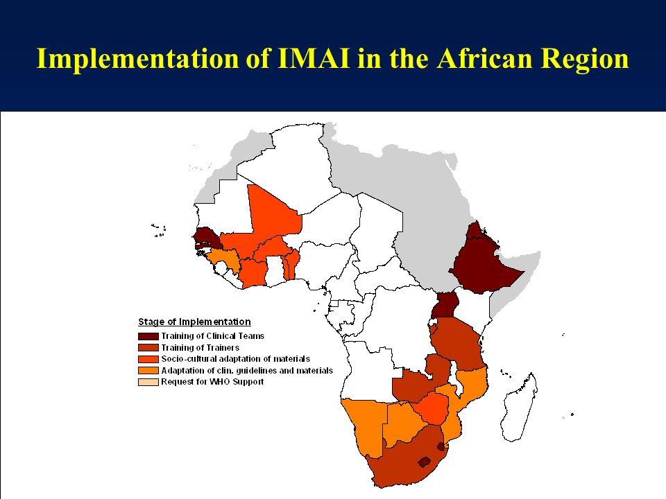 Implementation of IMAI in the African Region