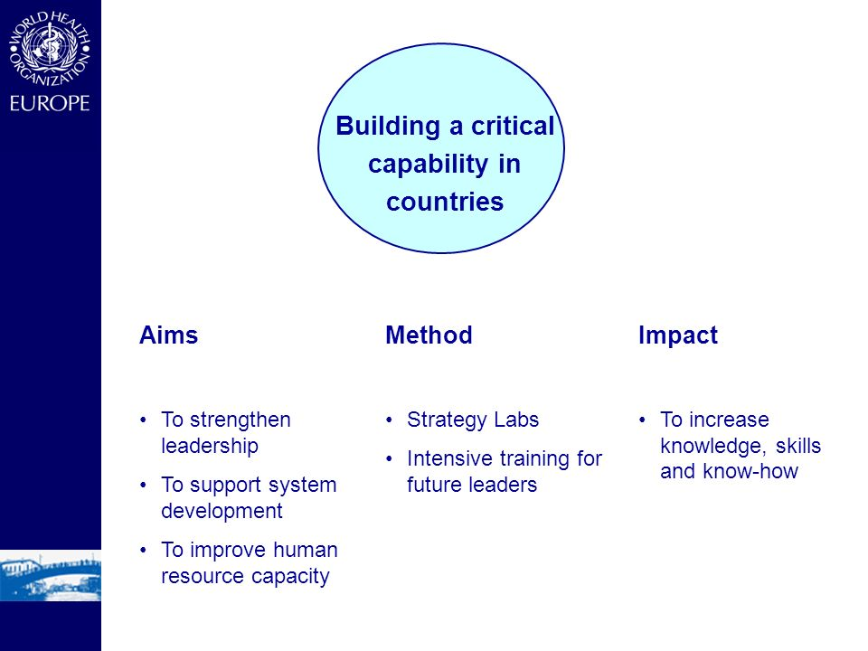 Aims To strengthen leadership To support system development To improve human resource capacity Method Strategy Labs Intensive training for future leaders Impact To increase knowledge, skills and know-how Building a critical capability in countries