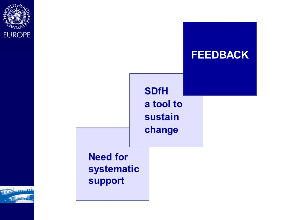 FEEDBACK SDfH a tool to sustain change Need for systematic support