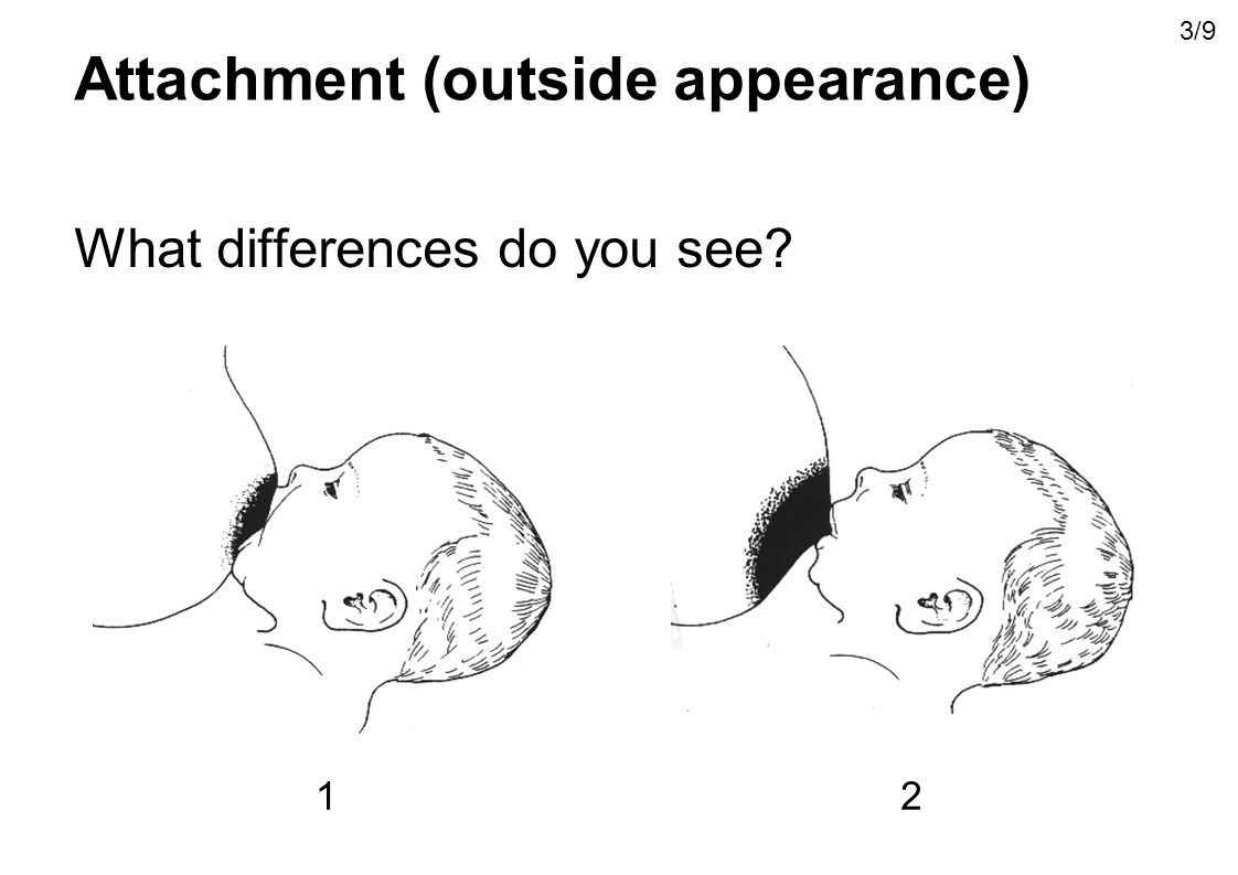 Attachment (outside appearance) What differences do you see? 12 3/9