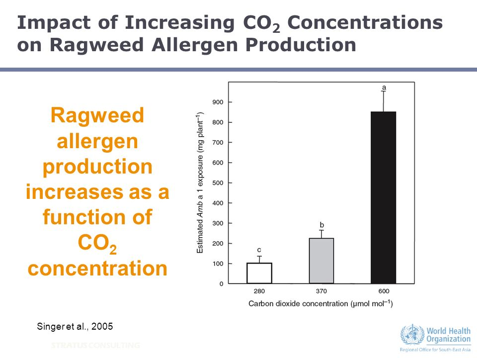 STRATUS CONSULTING Ragweed allergen production increases as a function of CO 2 concentration Singer et al., 2005 Impact of Increasing CO 2 Concentrati