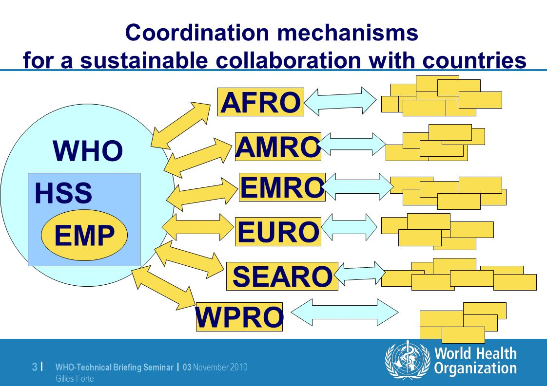 WHO-Technical Briefing Seminar | 03 November 2010 Gilles Forte 3 |3 | Coordination mechanisms for a sustainable collaboration with countries WHO HSS EMP AFRO AMRO EMRO EURO SEARO WPRO