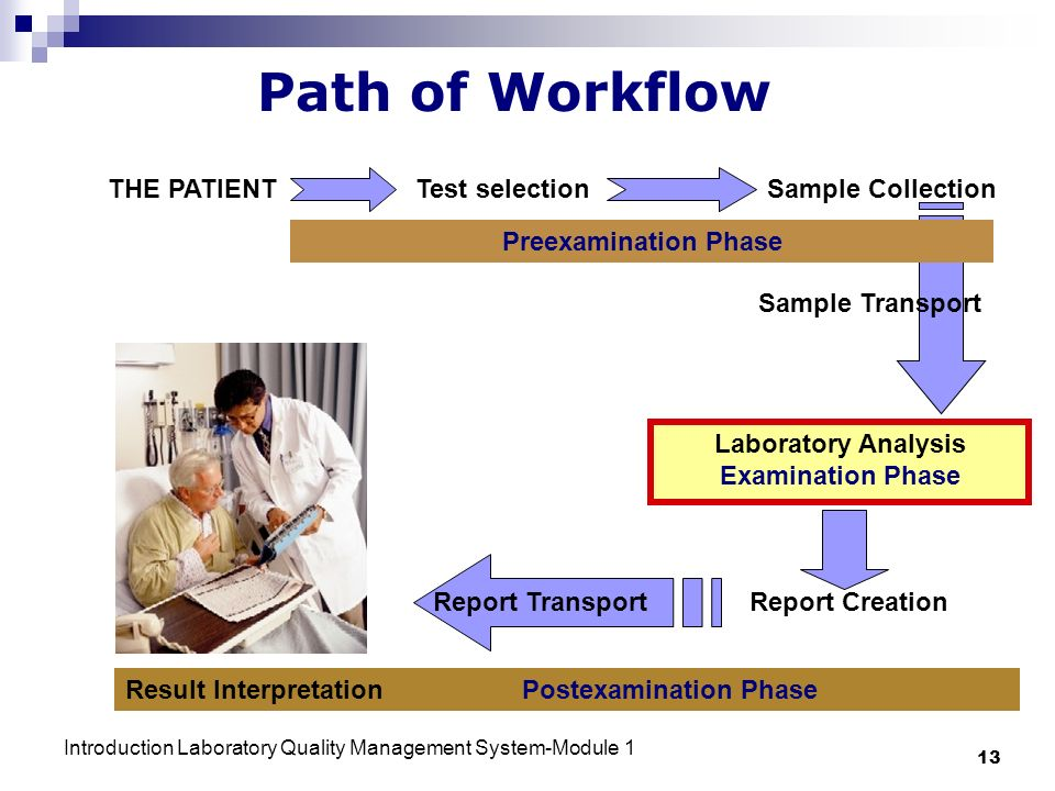 Introduction Laboratory Quality Management System-Module 1 13 Path of Workflow THE PATIENT Test selectionSample Collection Sample Transport Laboratory Analysis Examination Phase Report CreationReport Transport Preexamination Phase Result Interpretation Postexamination Phase