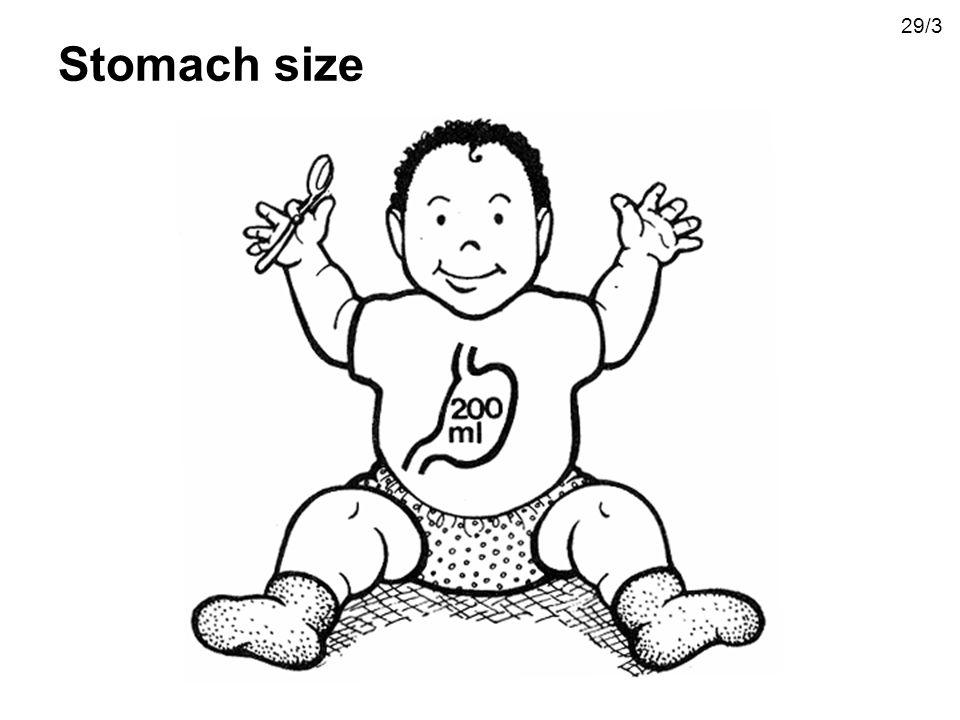 Stomach size 29/3