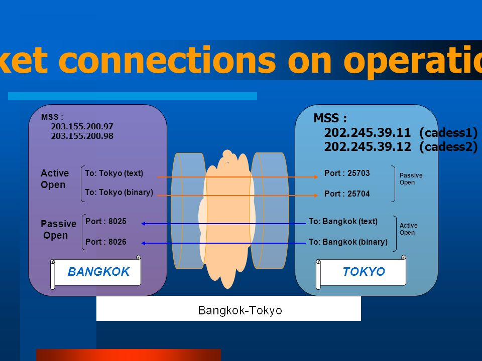 To: Tokyo (text) To: Bangkok (binary) Port : 25703 Port : 8026 BANGKOKTOKYO To: Bangkok (text) Port : 8025 To: Tokyo (binary) MSS : 202.245.39.11 (cadess1) 202.245.39.12 (cadess2) Port : 25704 MSS : 203.155.200.97 203.155.200.98 Active Open Passive Open Passive Open Active Open TCP socket connections on operation basis