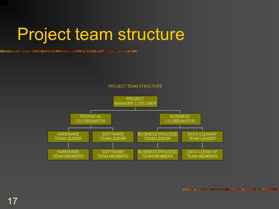 17 Project team structure