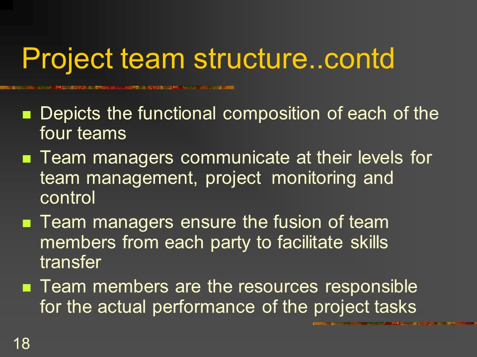 18 Project team structure..contd Depicts the functional composition of each of the four teams Team managers communicate at their levels for team manag