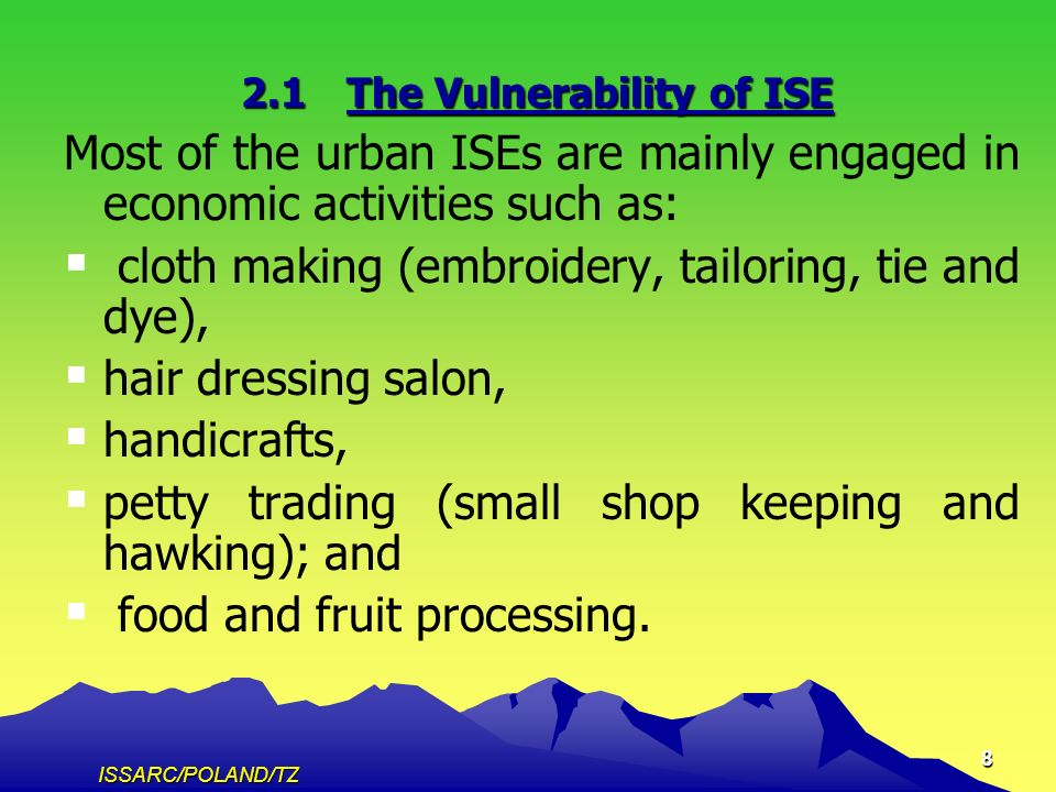 ISSARC/POLAND/TZ 8 2.1The Vulnerability of ISE Most of the urban ISEs are mainly engaged in economic activities such as: cloth making (embroidery, tailoring, tie and dye), hair dressing salon, handicrafts, petty trading (small shop keeping and hawking); and food and fruit processing.