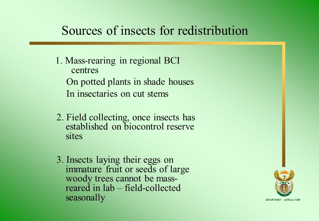 DEPARTMENT: AGRICULTURE 1. Mass-rearing in regional BCI centres On potted plants in shade houses In insectaries on cut stems 2. Field collecting, once