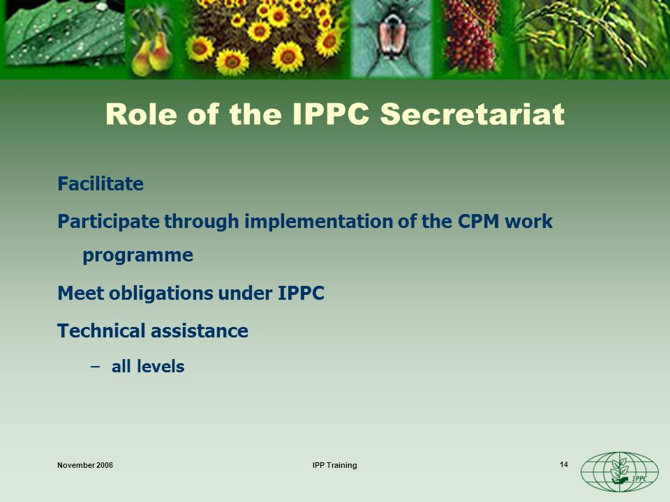 November 2006IPP Training 14 Role of the IPPC Secretariat Facilitate Participate through implementation of the CPM work programme Meet obligations under IPPC Technical assistance –all levels