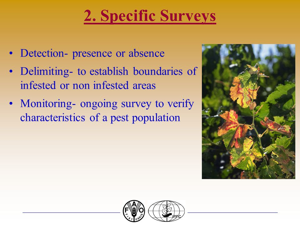 2. Specific Surveys Detection- presence or absence Delimiting- to establish boundaries of infested or non infested areas Monitoring- ongoing survey to