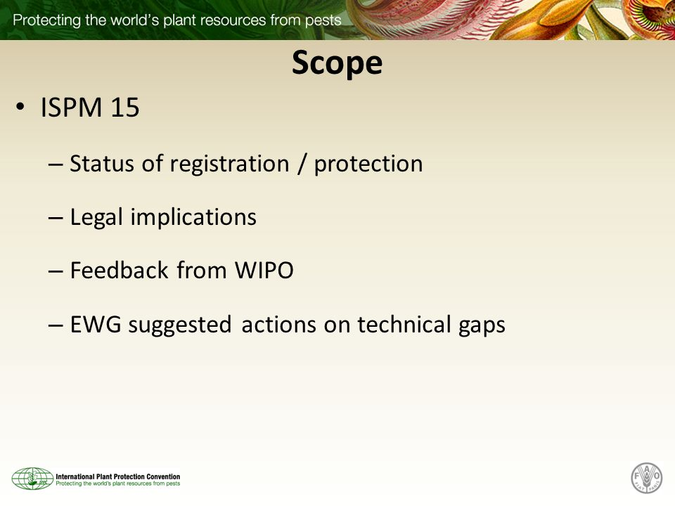 Scope ISPM 15 – Status of registration / protection – Legal implications – Feedback from WIPO – EWG suggested actions on technical gaps