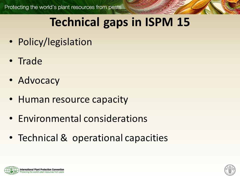 Technical gaps in ISPM 15 Policy/legislation Trade Advocacy Human resource capacity Environmental considerations Technical & operational capacities