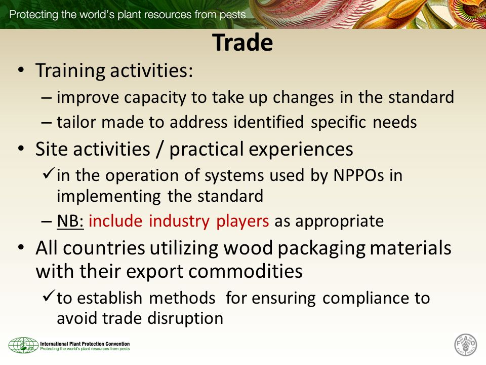 Trade Training activities: – improve capacity to take up changes in the standard – tailor made to address identified specific needs Site activities /